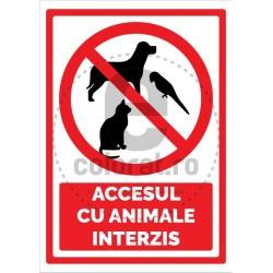 Accesul cu Animale Interzis