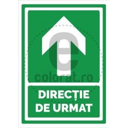 Directie de Urmat Inainte