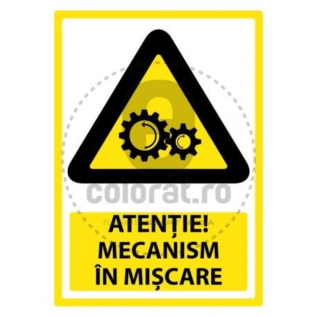 Atentie Mecanism in Miscare