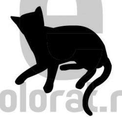 Sticker Decorativ Pisica - 2003