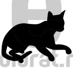 Sticker Decorativ Pisica - 2009