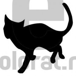 Sticker Decorativ Pisica - 2010