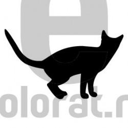 Sticker Decorativ Pisica - 2013