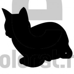 Sticker Decorativ Pisica - 2015