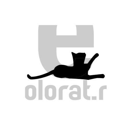 Sticker Decorativ Pisica - 2017