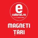 Magneti Tari