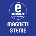 Magneti Steme