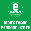 Indicatoare Personalizate